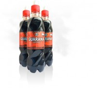 Guarana Wild Power 0,5 л